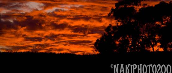 20091103_sunset_V0491
