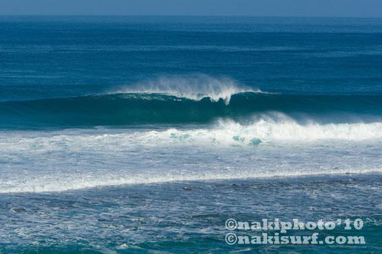 20100125_softsand reef_naki_V6765