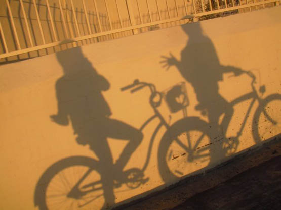 scarlett and cass shadow