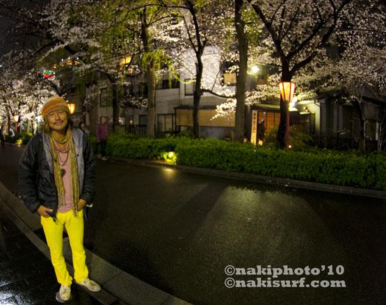 2010_kyoto_Sakura_V0457
