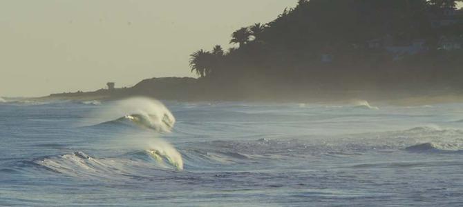 フォール・カリフォルニアのすてきなビーチブレイク_自分が選んだ波に向かうサーファー力(りょく)_レイルラインからつながる2枚のフィンが水を押し出すからこその速さと確かさのCOLE DBS_最高速を味わうのならクアッドで_(1155文字)