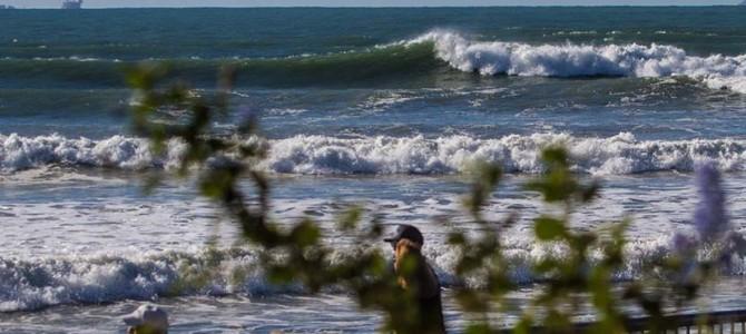 カリフォルニア・ストリート、海賊岬、リンコンの週末ショート・サーフトリップ_さまざまな波に乗りましたよ_Kaiくんの初フィッシュ証拠動画_(1662文字)