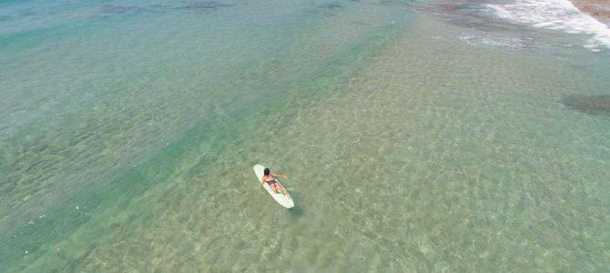 伝統文化を継承する奄美大島_SEEA_クリスタルクリア波のサーフィン_(1026文字)