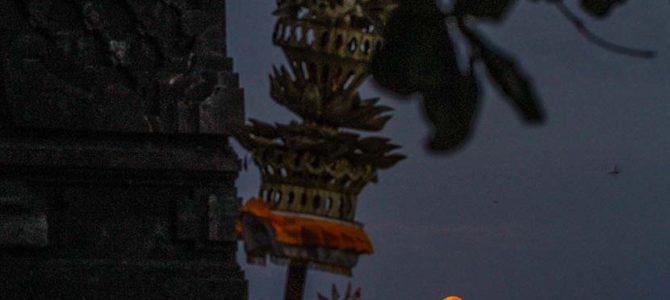 満月の夜明け_新時代のスモールフィン&ビッグフィッシュ(驚きの超感覚)_ロティ&ウエイブプール動画_(1502文字)