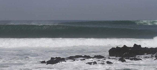 Surf's up!_純粋な波乗り思想_スギさんのバリ努力世界に涙した日_(1809文字)