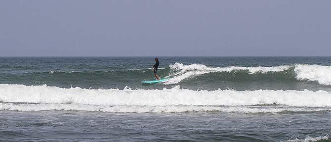波に化けたワニ_サーフィンの最大の敵は、知的勇気の枯渇である_(2222文字)