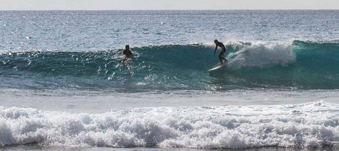 【サーフィン研究所】二月の台風波_龍郷町のタイ料理屋_(1269文字)