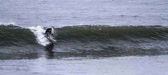 太東岬のバリー・カナイアウプニとECサーフボード_(2123文字)