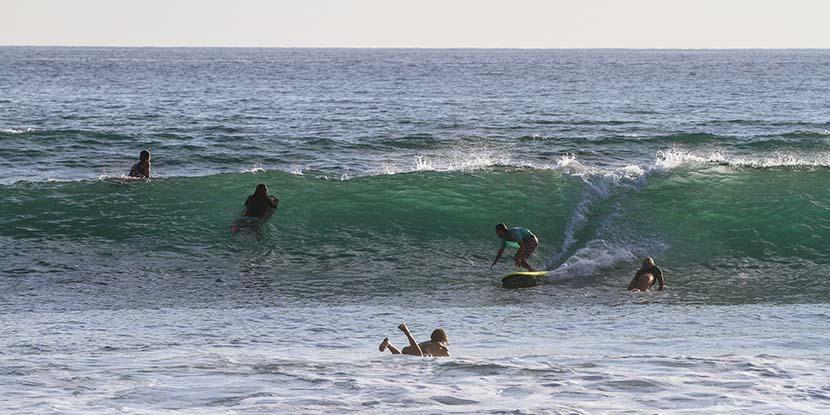 【サーフィン研究所】懐かしい波_ワイリーとサンオノフレ・サーフ・カンパニー(1007文字)