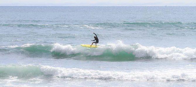 【サーフィン研究所】健康志向_MLB_メガクアッド・テスト中です_SURF&SURF Tのプロセス_(1502文字)
