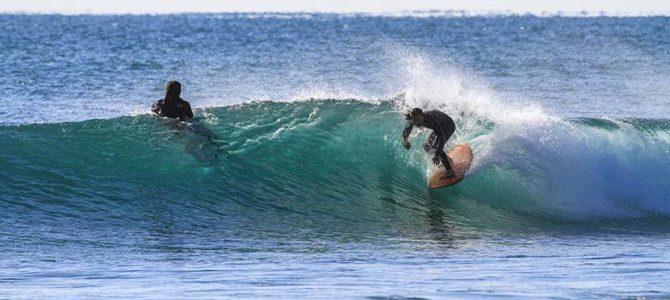【サーフィン研究所】空海コールド・ムーン_タイムスリップ_8ホテル『フーディガイド#11』_タマちゃんの菩薩修行ときんちゃんのKISS感涙_(1539文字)
