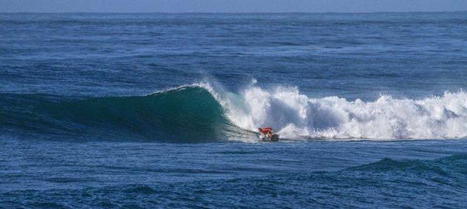 【サーフィン研究所】フィンのことに気づいた_西山金時と室戸魚事情@キラメッセ_(1999文字)