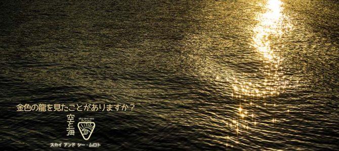 【サーフィン研究所】龍その後_ありがとうバリー・マッギー_自然芸術を高間教授が研究する(かも)_(1008文字)
