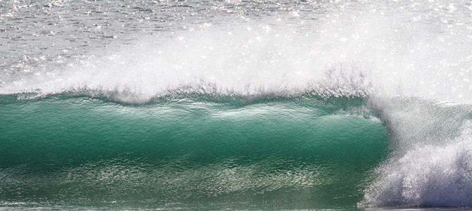 【サーフィン研究所権威号】COVID19後の世界_(1953文字)