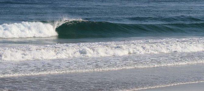 【サーフィン研究所】まだまだいい波_72HRヘアカリ&NAKISURFコラボ 『スーパータキビ神・神格化記念ロングスリーブ・シャツ』(2629文字)