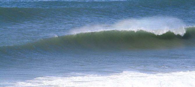 【サーフィン研究所】空海、空白の7年間_春波と台風波の大きな違い_86kgと20cmのミスマッチ_千葉仲間図鑑_カボチャ冷麺_(1782文字)