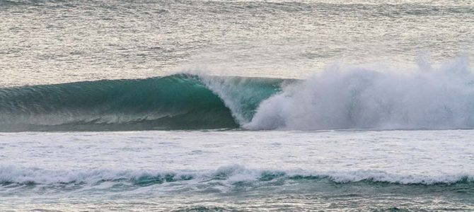 【サーフィン研究所】土佐のイチバン!_(1313文字)