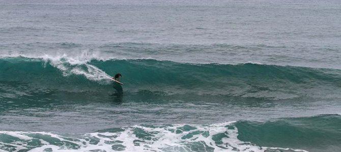 【サーフィン研究所】高さ5mの東南東うねり_タキローとイデオロギーのSDGs_おいしいもの研究_(1873文字)