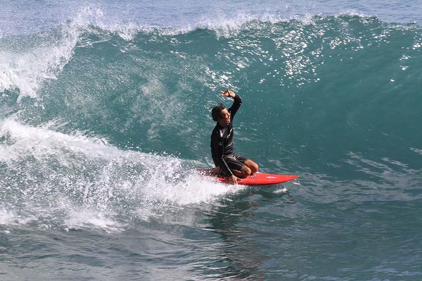 【サーフィン研究所】さよならタコクラゲ_波乗り体験から観念を抽出するタヌ氏_第38回おいしいもの研究@スカシー_(1792文字)