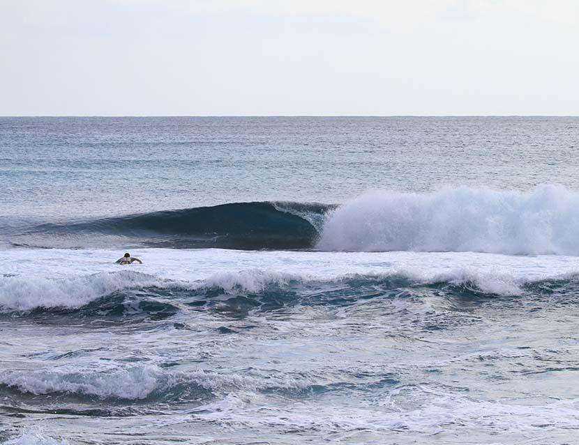 【サーフィン研究所】アンキロサウルス波の本質_グリーンヒル来訪!_世界一エコなウエットスーツ_(1585文字)