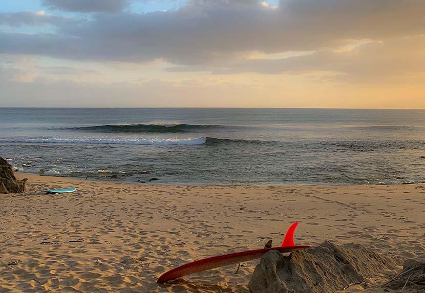 【サーフィン研究所:テクニック編】バレル波の落とし方と自身の順番_土佐の鬼と美味_(2600文字)