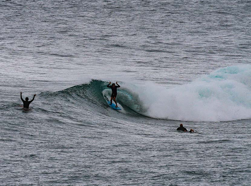 【サーフィン研究所】台風コンパスとスマグリはんポーズ_サバットと柴犬、そしてマンシューケン_カワウソVSタヌキ_(1575文字)