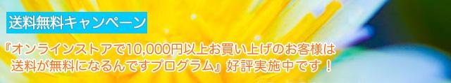 online_banner