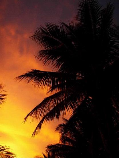 Cook Islands 027
