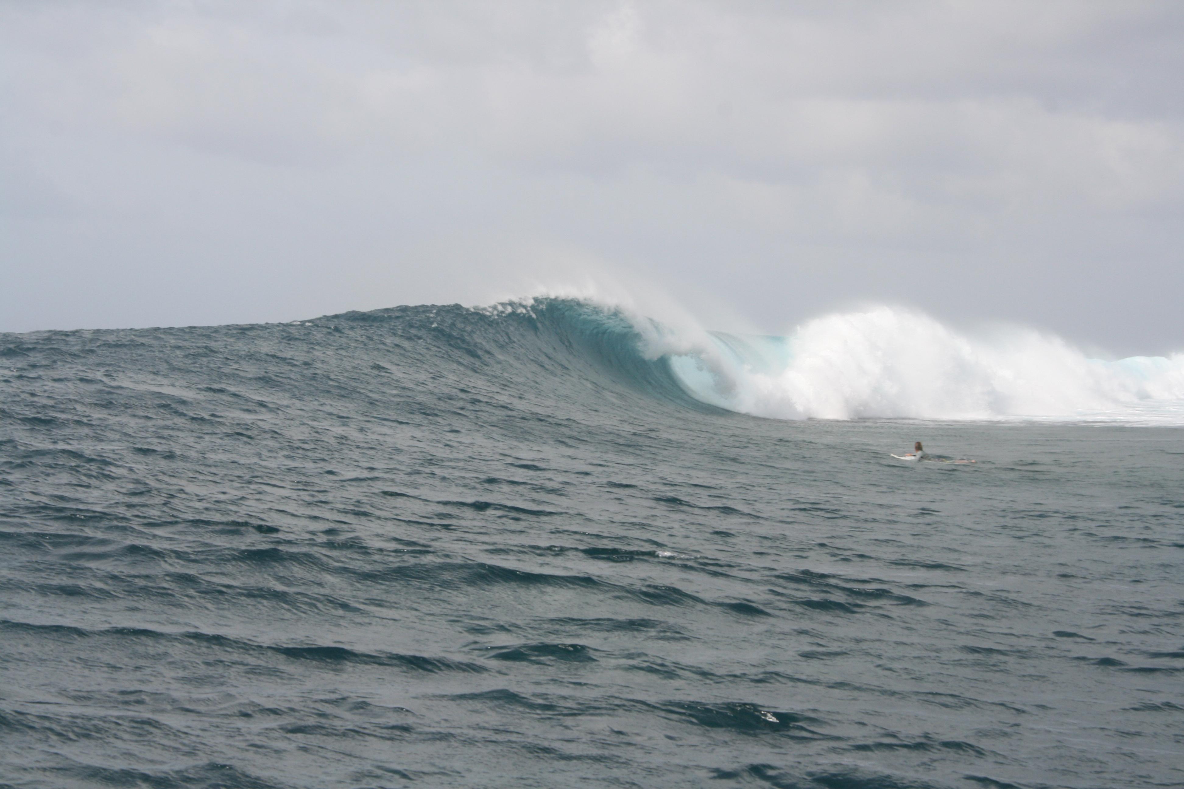 マイクロネシア  ポンペイ SURF TRIP