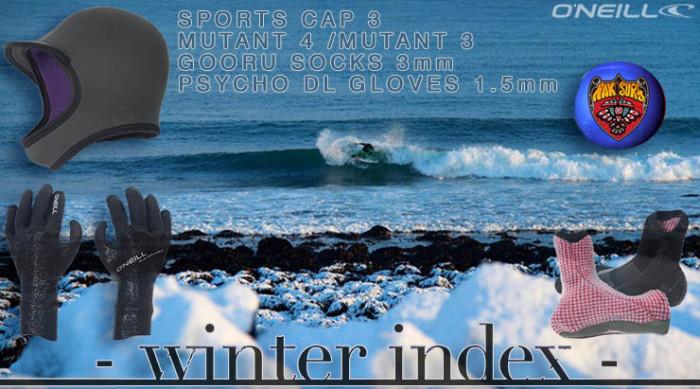 top_winter_ian