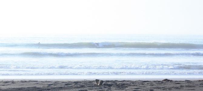 2018/7/11(水)波情報_ハラ〜ムネ 「2018夏のボーナスキャンペーン」「CATCH SURF店頭限定イベント開催中!」「2018 夏のウエットオーダーフェア!」「Seea2018入荷&スペシャルSALE開催中!」