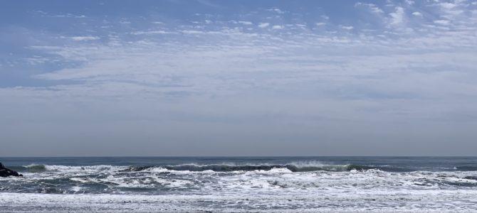 2019/5/23(木)波情報_アタマオーバー【CATCH SURF初心者大歓迎祭スタート】【BIRDWELL(バードウェル)2019発売中】【NAKISURFオリジナルアパレル発売開始】