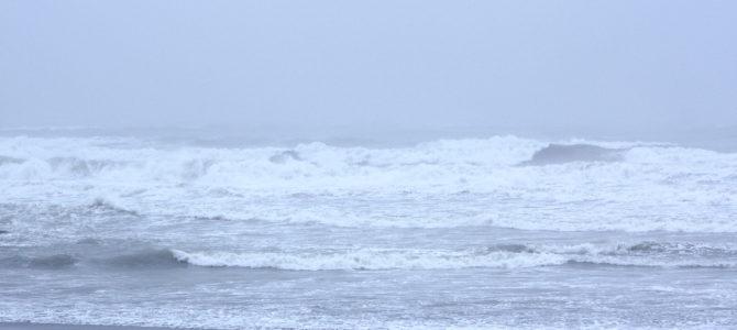 2019/5/21(火)波情報_アタマオーバー【CATCH SURF初心者大歓迎祭スタート】【BIRDWELL(バードウェル)2019発売中】【NAKISURFオリジナルアパレル発売開始】
