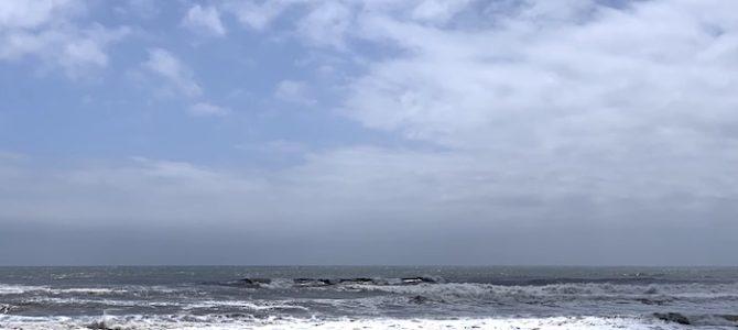 2019/6/11(火)波情報_アタマオーバー【2019夏のウエットスーツオーダーフェア開催中】【CATCH SURF先行予約スタート】【BIRDWELL(バードウェル)2019発売中】