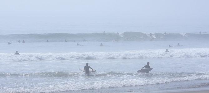 2019/8/4(日)波情報_コシ〜ハラ【2019夏のボーナスキャンペーン開催中】【CATCH SURF2019モデル発売中】