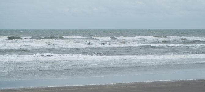 2019/10/24(木)波情報_ハラ〜ムネ【タイラーのニューフィッシュ取扱い開始】【CATCH SURF 2019 ALL 20%OFF】【サーフボード高額買取・サーフボード委託販売】
