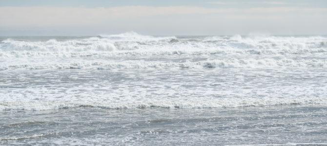 2019/10/26(土)波情報_頭半〜ダブル【タイラーのニューフィッシュ取扱い開始】【CATCH SURF 2019 ALL 20%OFF】【サーフボード高額買取・サーフボード委託販売】