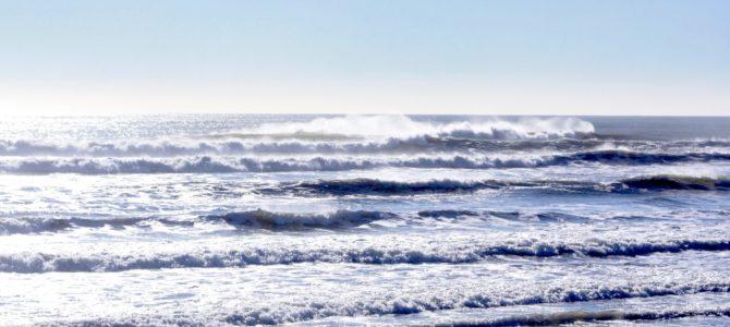 2019/10/13(日)波情報_アタマオーバー【タイラーのニューフィッシュ取扱い開始】【CATCH SURF 2019 ALL 20%OFF】【サーフボード高額買取・サーフボード委託販売】