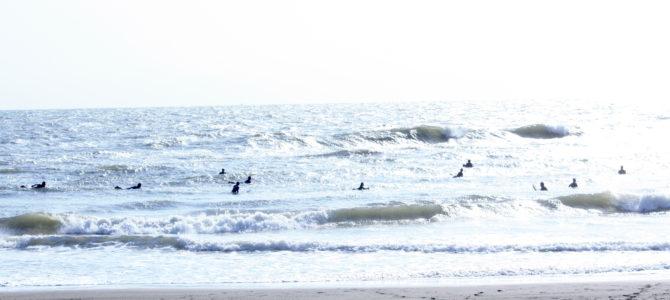 2019/11/2(土)波情報_ハラ〜ムネ【サーフボード価格大幅改定】【冬のウエットスーツオーダーフェア】【Seea最大40%OFFセール】【CATCH SURF 2019 ALL 20%OFF】