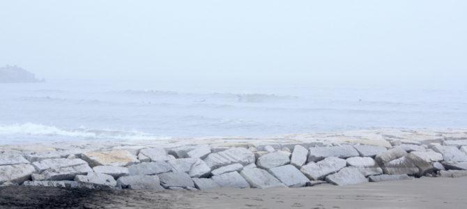 2020/6/4(木)波情報_ヒザ〜モモ【最新情報&キャンペーン情報など盛り沢山★】