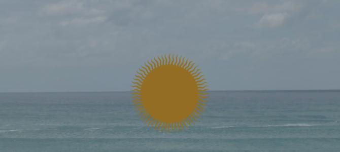2020~2021【MOLLUSK SURF入荷★】店頭にて先行販売開始しています!